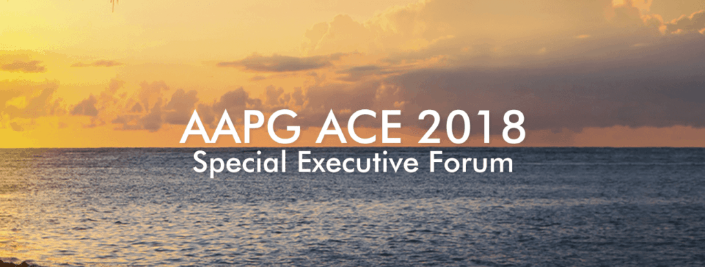 Banner image for AAPG ACE 2018 special executive forum