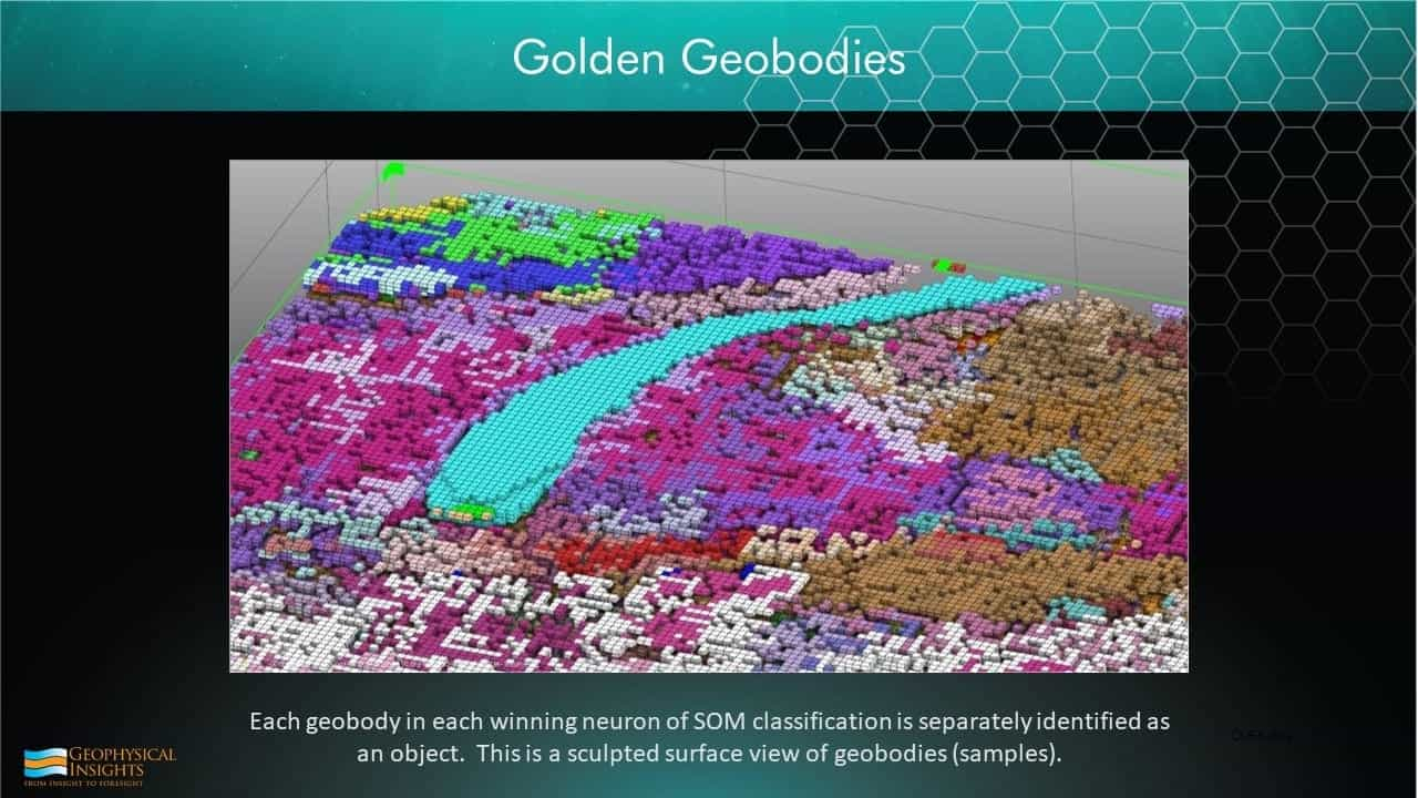 Slide image with geobodies colormap