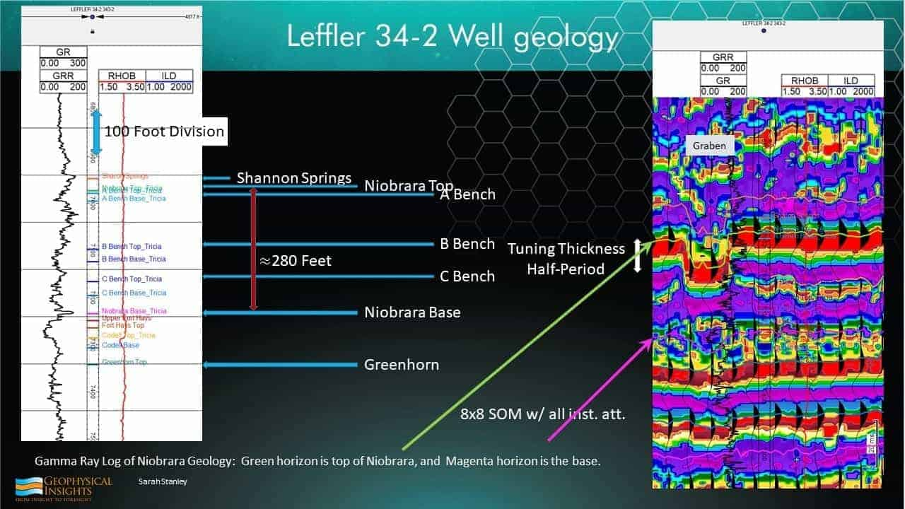 Slide with well geology and SOM