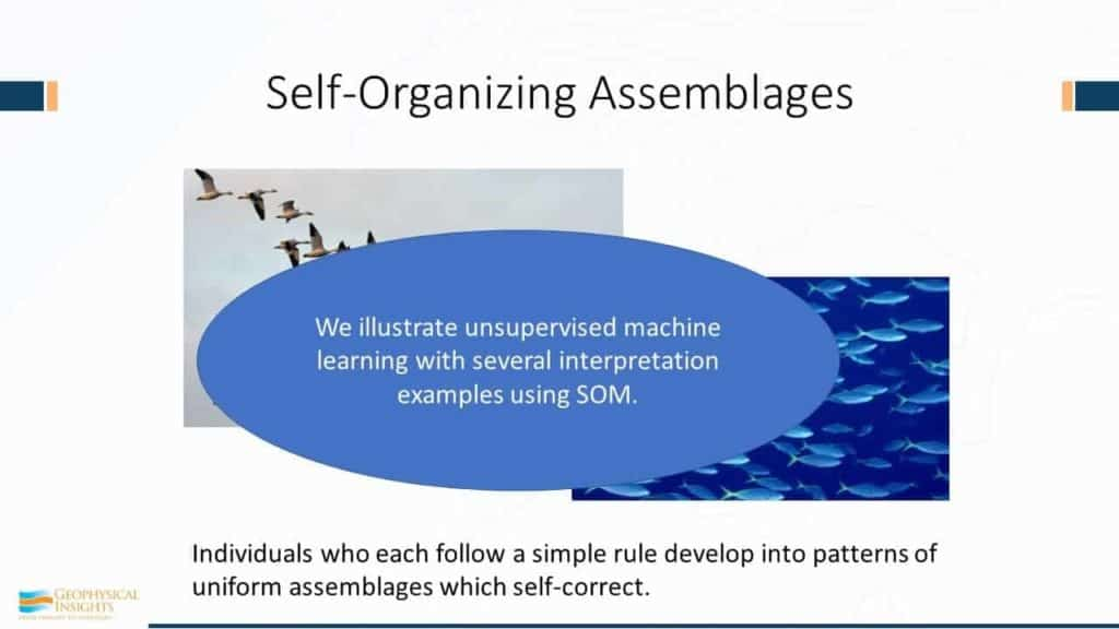 Annotated image of self-organizing slide