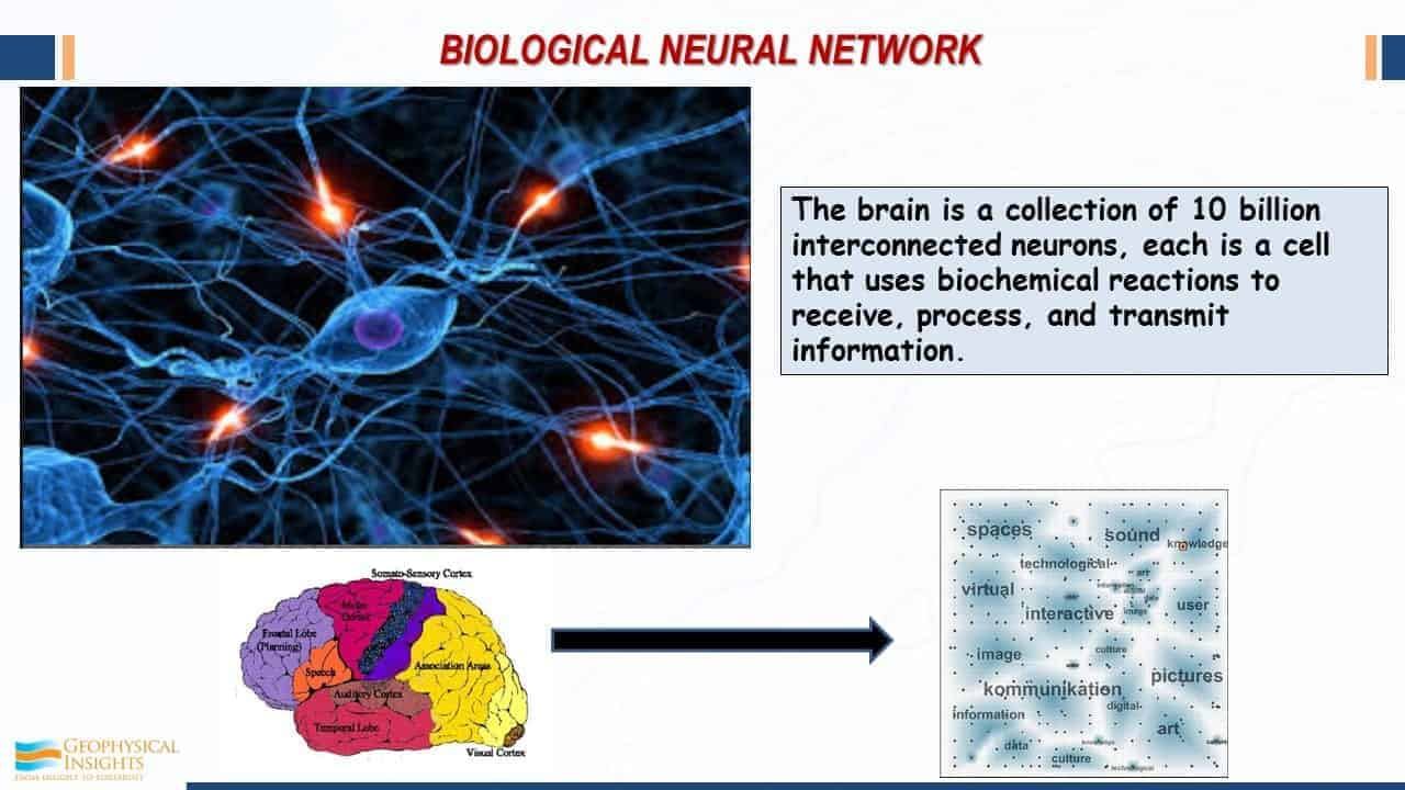 Slide image with neurons and brain diagram