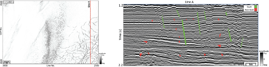 Image of a vertical slice from the field seismic amplitude data