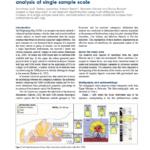 Net Reservoir Discrimination through Multi-Attribute Analysis at Single Sample Scale